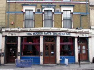 monto_water_rats1