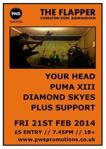 Puma XIII poster